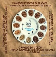 Các hệ thống phân loại cà phê cơ bản