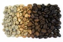 Quá trình rang cà phê qua các giai đoạn